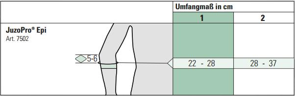 Image result for juzopro epi